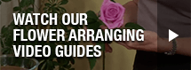 Watch our flower arranging video guides