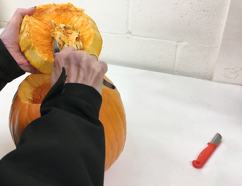 Carve the Pumpkin using a Knife, Florist Knife and Spoon. You will need to remove the seeds, fibres and discard from the pumpkin. (NB. If you are under 18, please ensure you complete the task under adult supervision).