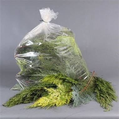 Conifer Mixed - 1 Kg Bag