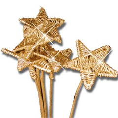 Gold Lata Star Picks 8cm wide
