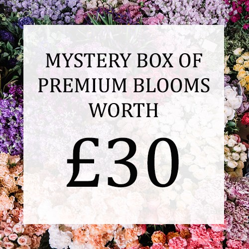 Mystery Flower Box £30 (incl. VAT)