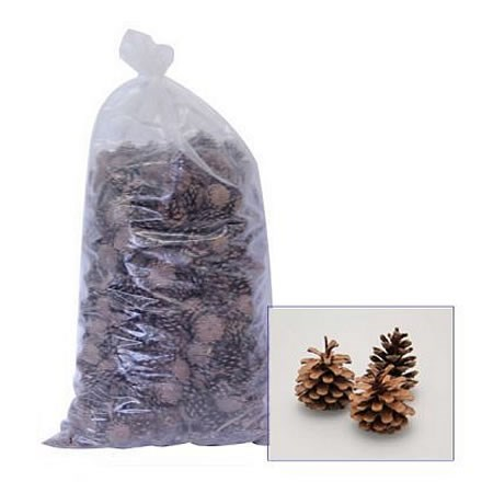 Dried - Pine Cones Natural 10Kg