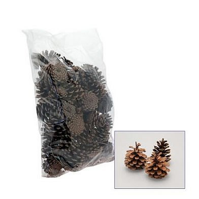 Dried - Pine Cones Natural 1kg