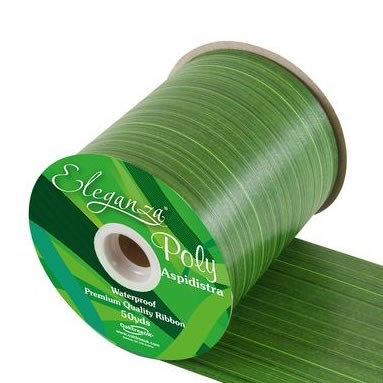 Ribbon Poly - Aspidistra Print 100mm