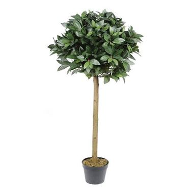 Artificial Bay Tree 4'
