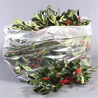 Holly Green + Red Berries (Large Bag)