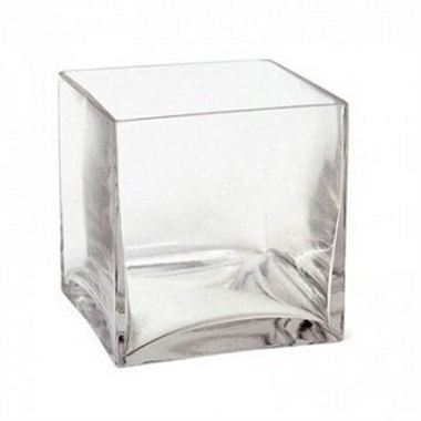 Square Glass Cube Vase 10cm Wholesale Dutch Flowers