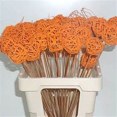 Grassball Picks - orange