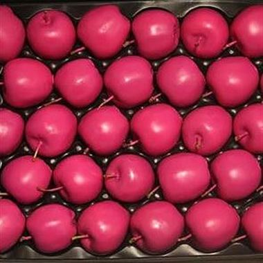 Waxed Apples - Fuchsia