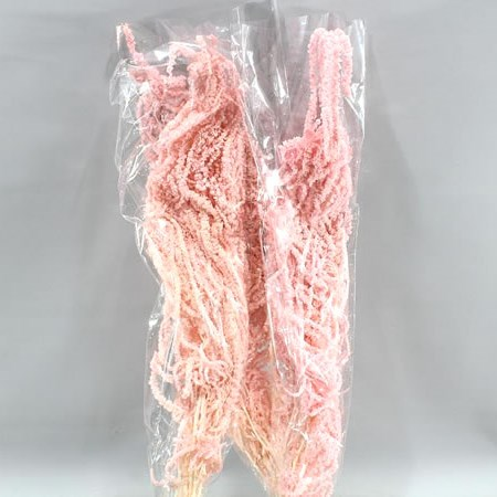AMARANTHUS HANGING LIGHT PINK PRESERVED