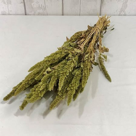 Amaranthus Green (Dried)