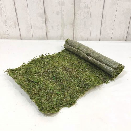 Asia Preserved Moss Sheet