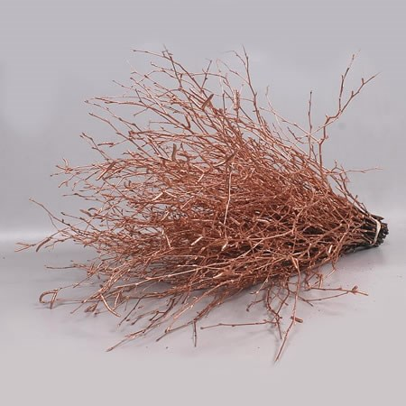 BETULA DYED COPPER