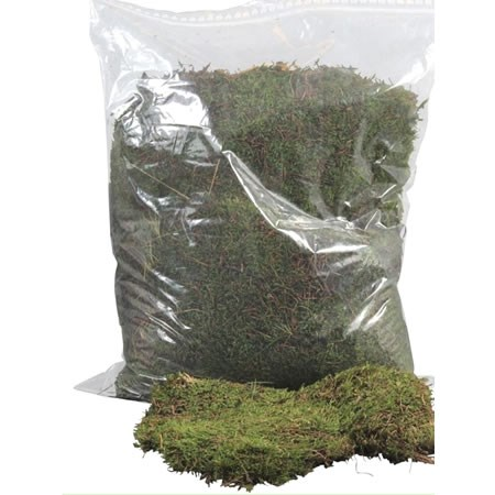 CARPET / FLAT MOSS IN PLASTIC BAG