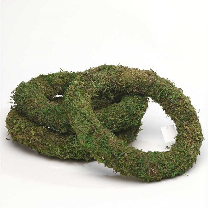 "Preserved Moss Rings (12"") x10"