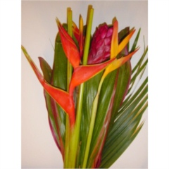 Heliconia Bqt (Varieties Included may Vary to image)