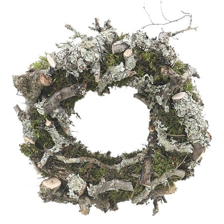 Bonsai, Larix & Moss Ring 30cm