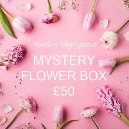 Mothers Day Mystery Flower Box £50 (incl. VAT)