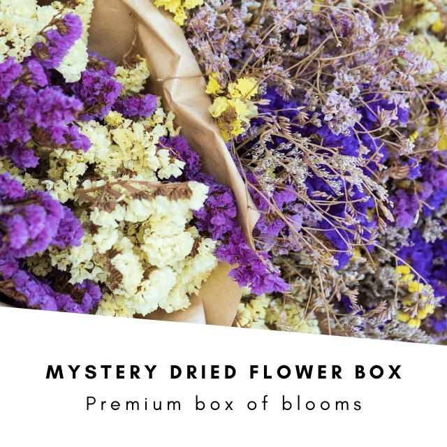 Mystery Dried Flower Box (inc VAT)