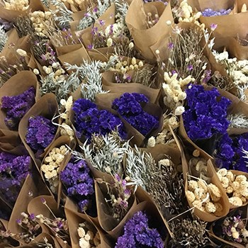 Mystery Dried Flower Box (Cols May Vary)