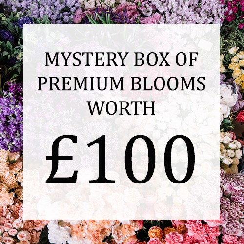 Mystery Flower Box £100 (incl. VAT)