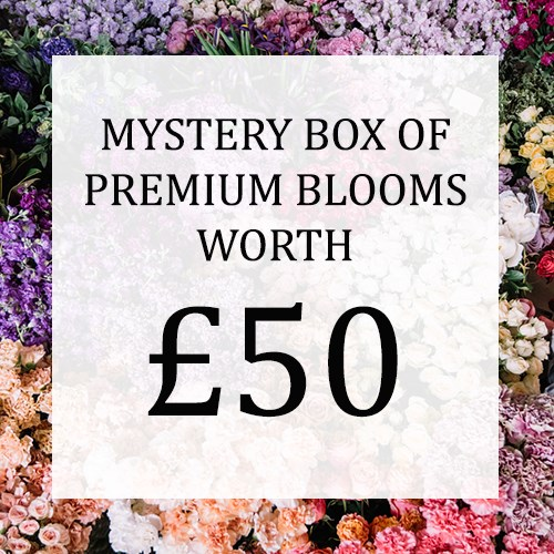 Mystery Flower Box £50 (incl. VAT)