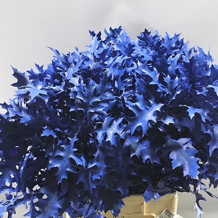 OAK LEAVES DYED BLUE (SMALL)