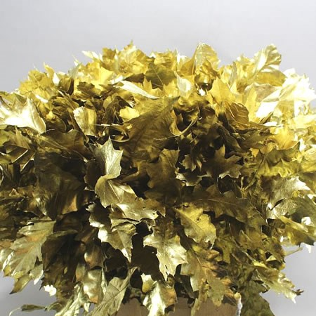 OAK LEAVES DYED GOLD