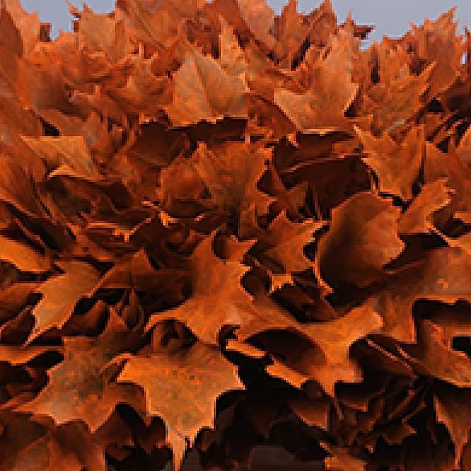 OAK LEAVES DYED ORANGE
