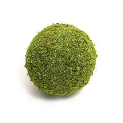 Preserved Moss Balls 10cm (pack of 6)