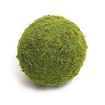 Preserved Moss Balls 15cm (pack of 2)