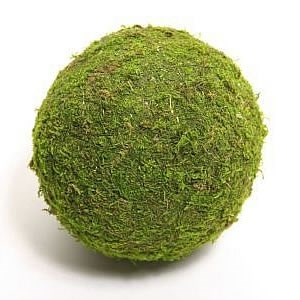 Preserved Moss Balls 20cm (pack of 1)