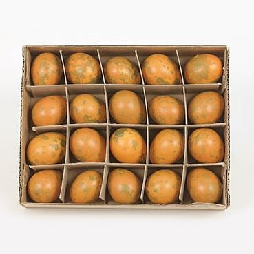 Quail eggs orange x20