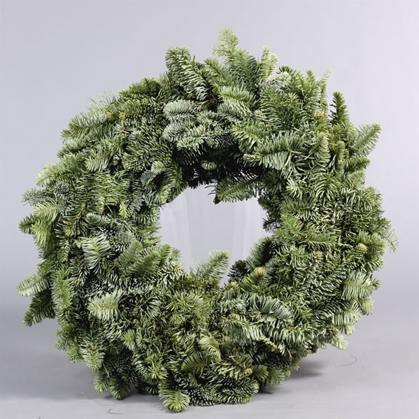 Spruce Ring Green 25cm - Fully Bound