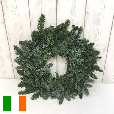 Spruce Ring Green (Irish) 40cm - Half Bound