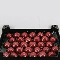 Waxed Apples - Burgundy