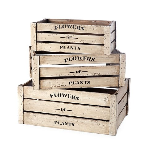 Flowers De Plants Crate (Set of 3)