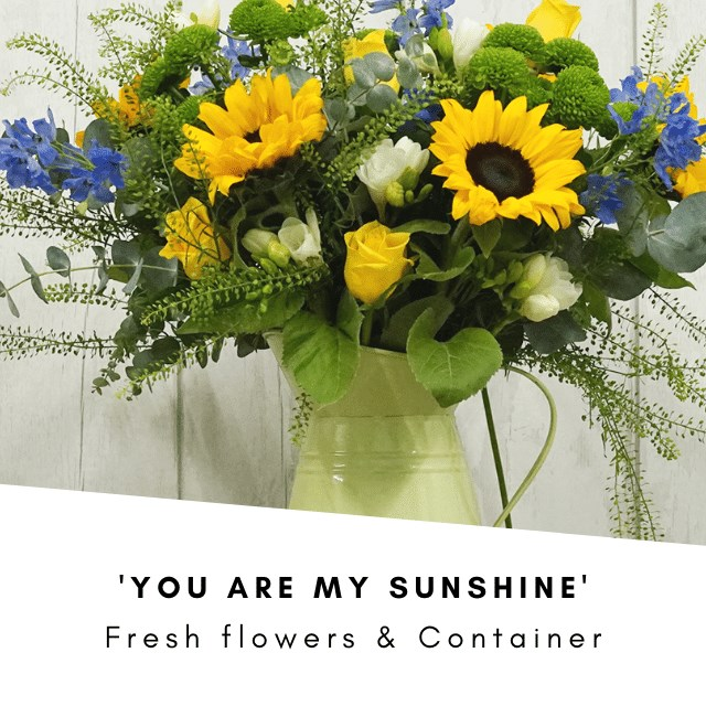 You are My Sunshine £40 (Inc VAT) & Jug  (Cols May Vary)
