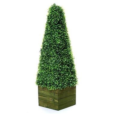 Artificial Boxwood Cone in Wooden Box