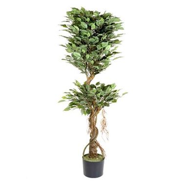 Artificial Ficus Tree - Double Ball