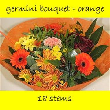 Bouquet Germini Orange - 18 stems
