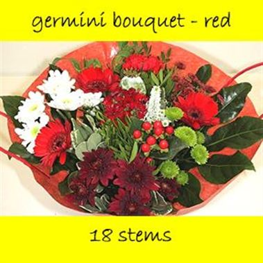 Bouquet Germini Red - 18 stems