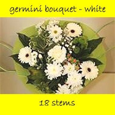 Bouquet Germini White - 18 stems