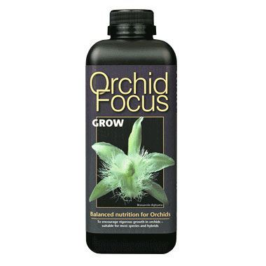 Orchid Focus - Grow