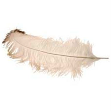 Ostrich Feathers - Natural